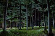 lightpainting_mrr_14